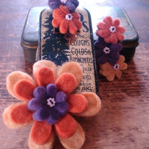 Brooch_and_Barrettes